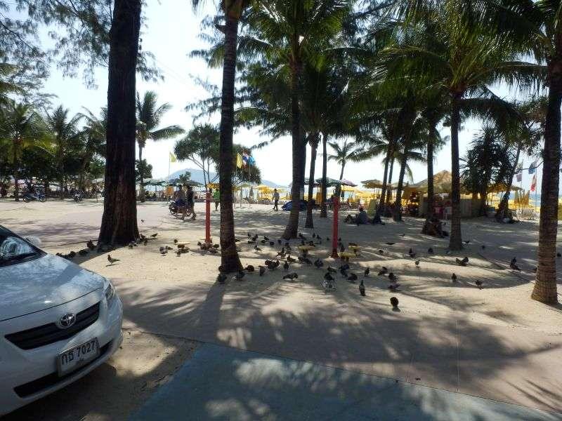 Beachroad ( Fußweg )