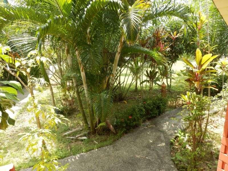 der Ausblick in den Garten